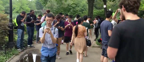 Pokemon Go players in Central Park NYC
